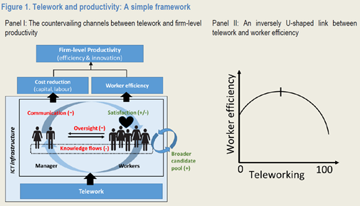 Teleworking and productivity